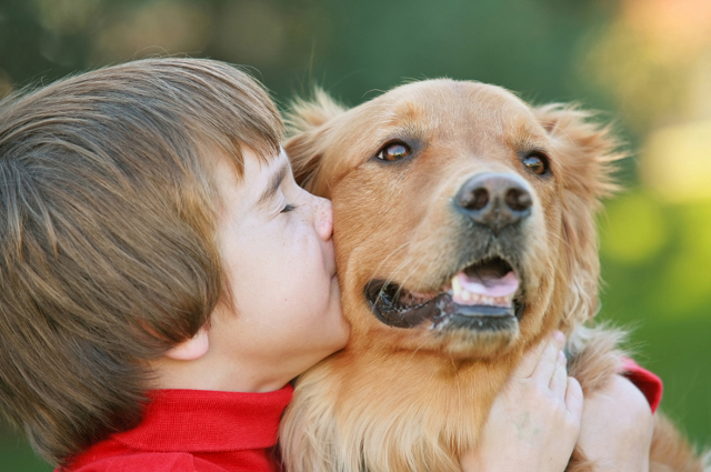a child kissing a dog