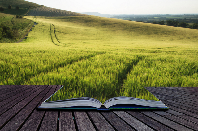 A photo-illustration of an open book morphing into a landscape of grass and trees, for a feature of reviews recommending books by Tufts community members