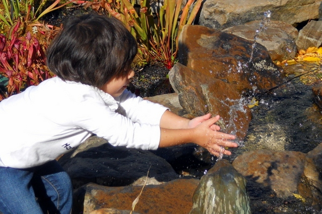 """A young child outdoors cupping her hands in a bubbling stream. Children who deeply experience nature can to grow into """"Earth stewards"""" and restore the planet's health and future"""