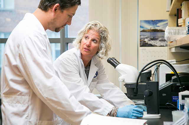 Caroline Genco, Tufts' vice provost for research, talks with a postdoctoral student in her lab before the pandemic. Researchers across Tufts are pivoting to fight the coronavirus.