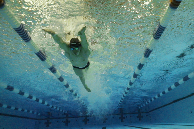 David Gelfand swimming in a pool, seen from below in the water. Tufts writers and multimedia producers share their favorite pieces of 2020.